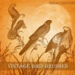 Vintage Bird кисточки для Photoshop