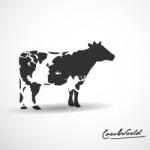 Логотипы компаний 2011 года