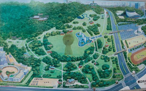 Карта-схема Парка Ёёги Токио