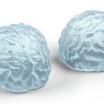 Где купить необычные формы для льда от Fred&Friends?