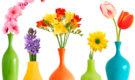 Красивые и стильные вазы для цветов. Где купить вазу своей мечты?