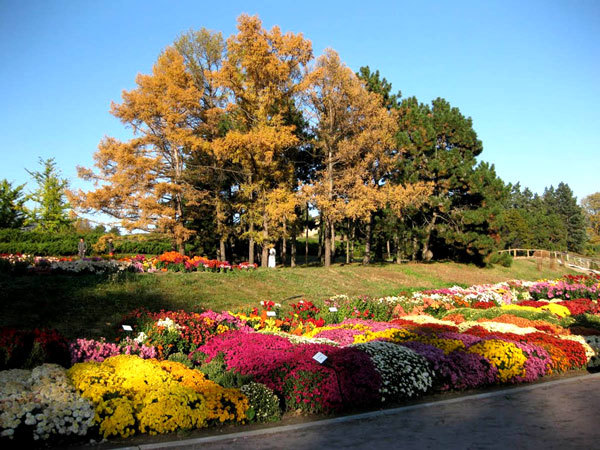 Национальный ботанический сад в Киеве (3)