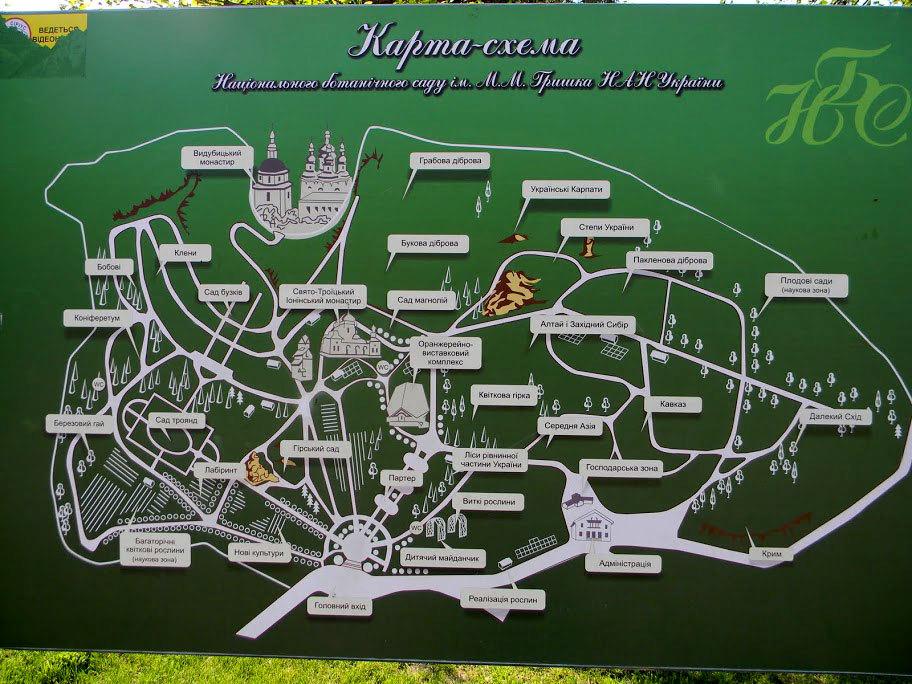 Национальный ботанический сад имени Николая Гришко. Карта-схема