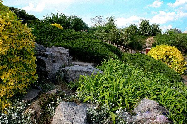 Национальный ботанический сад им. Н.Н (3)