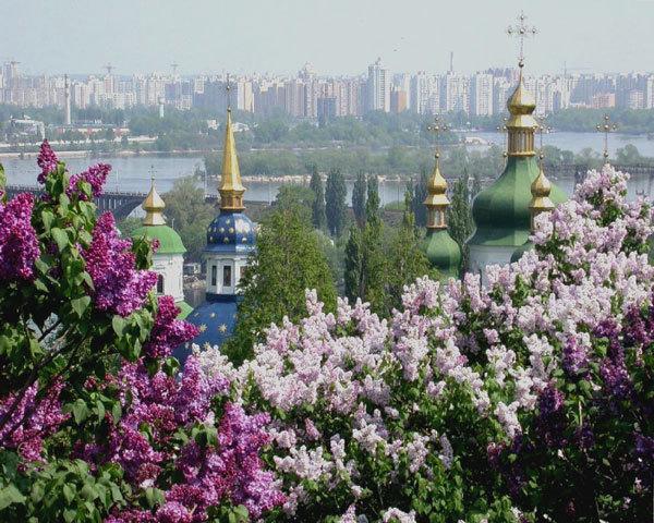 Сад сирени (Сирингарий) в боатническом саду Киева (1)
