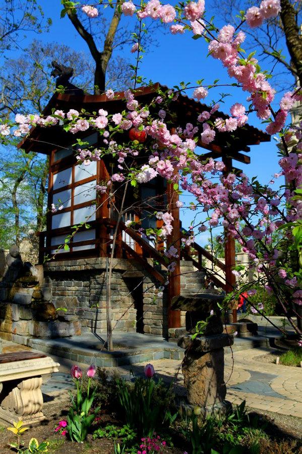 Японская культура в парке