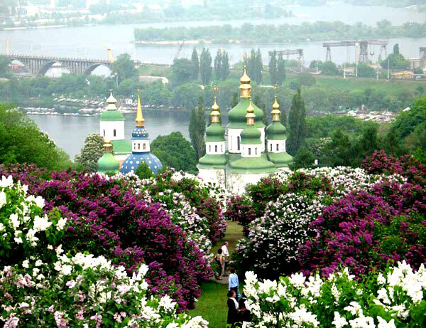 что посмотреть в Киеве, ботанический сад