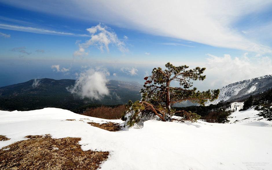 Гора Ай-Петри зимой.