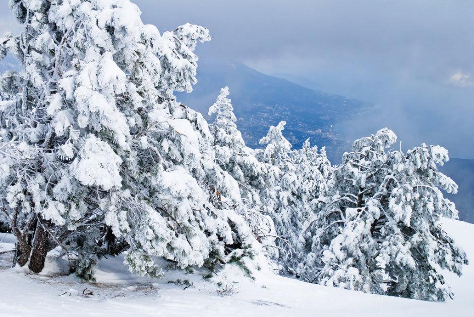 Зима на Ай-Петри (1)