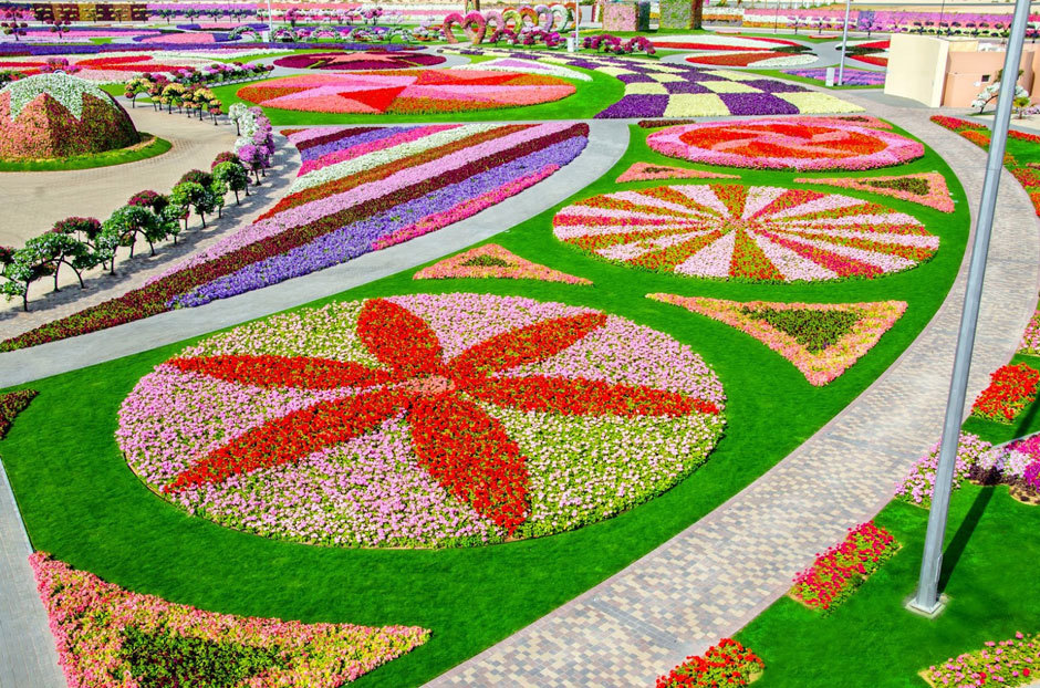 дубай сад цветов  (1)