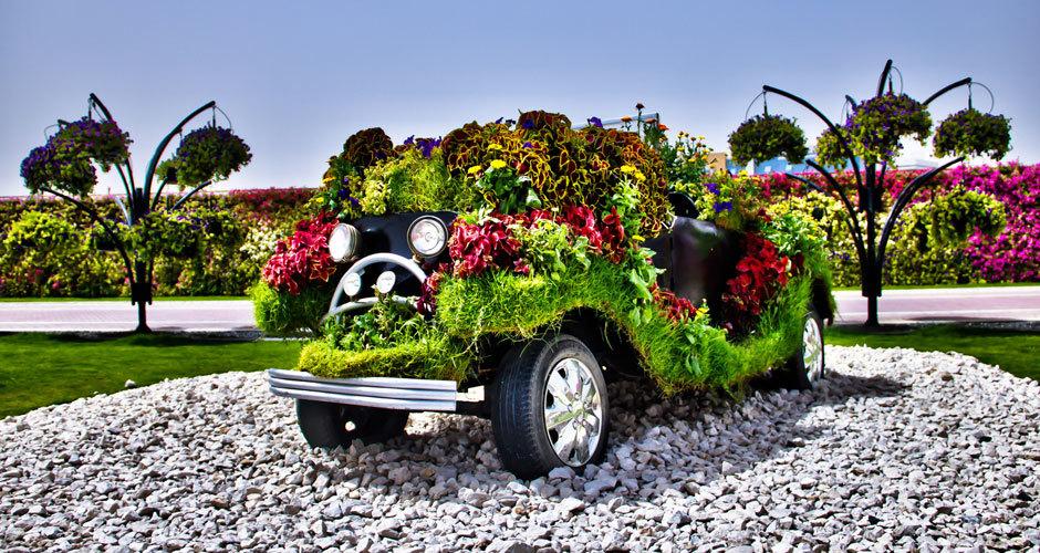 машина, дубай сад цветов