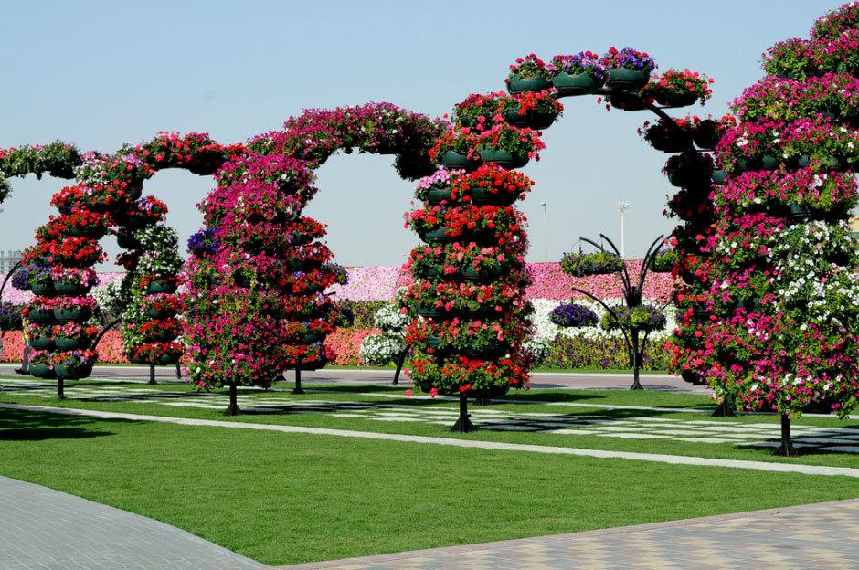 оаэ дубай парк цветов (1)