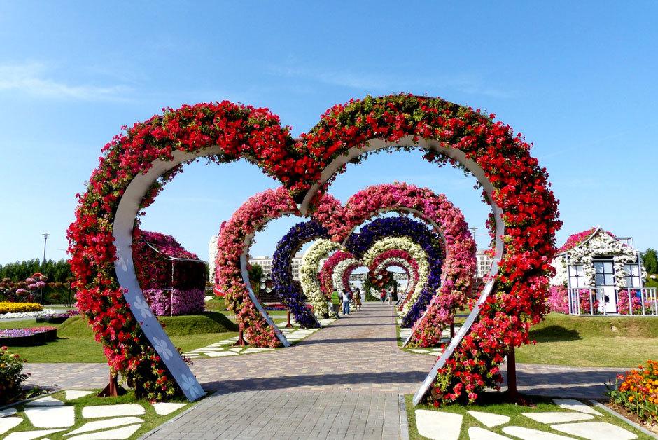 оаэ дубай парк цветов (2)