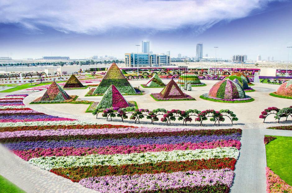 парк цветов  в ОАЭ