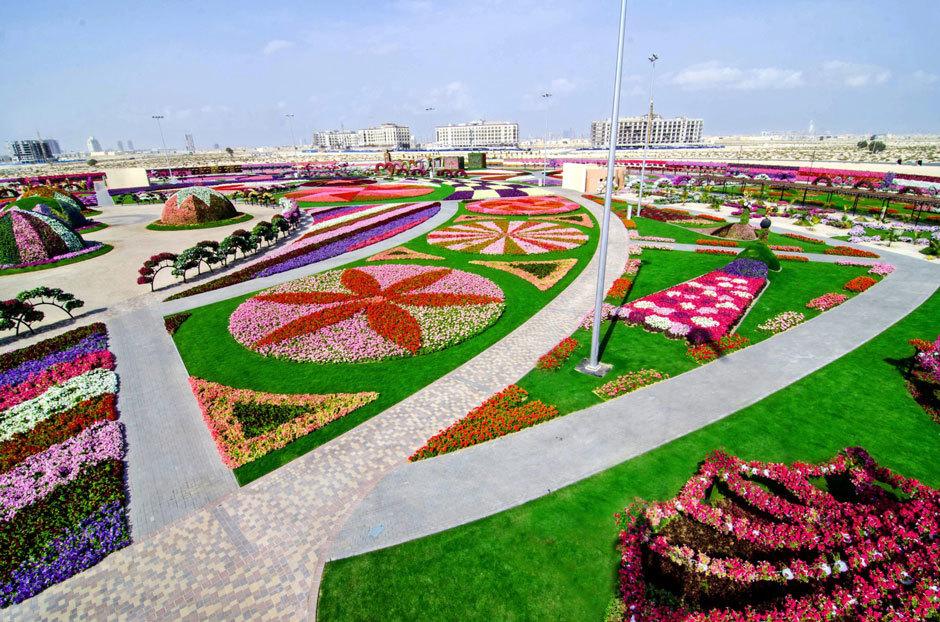 парк цветов в дубае фото (2)