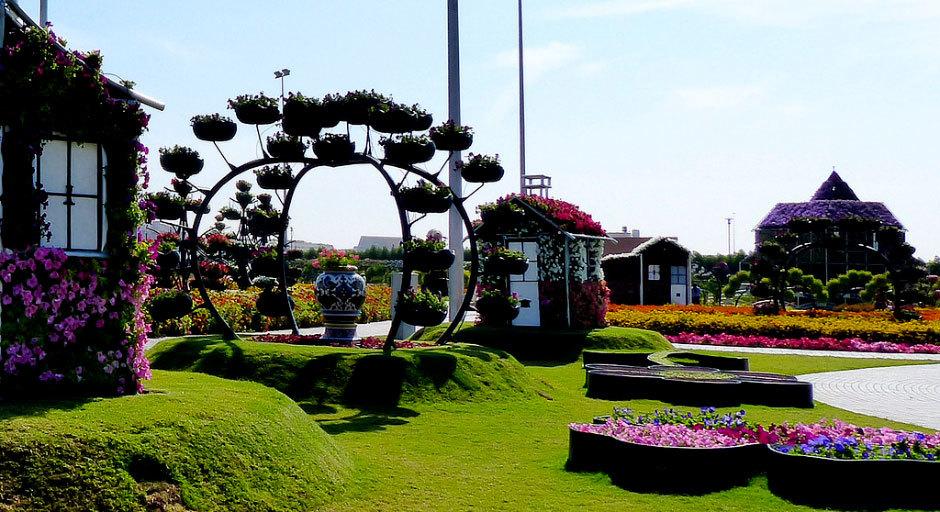парк цветов в дубаи
