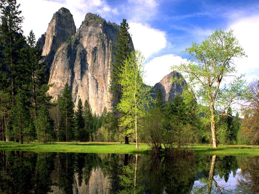 природа парка Yosemite  (1)