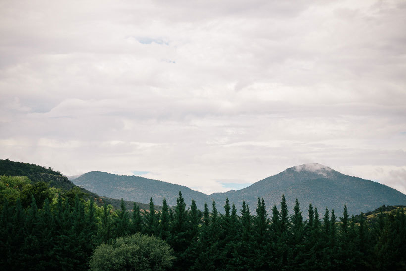 леса Аризоны