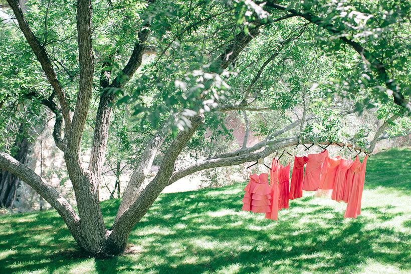 платья на дереве