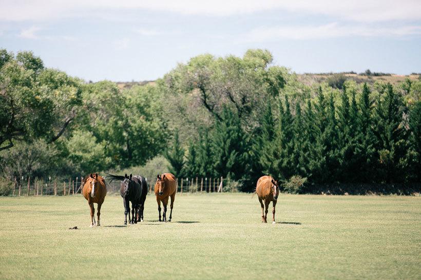 ранчо в Аризоне