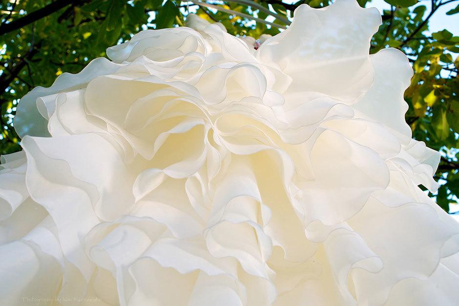 Свадебное платье на дереве
