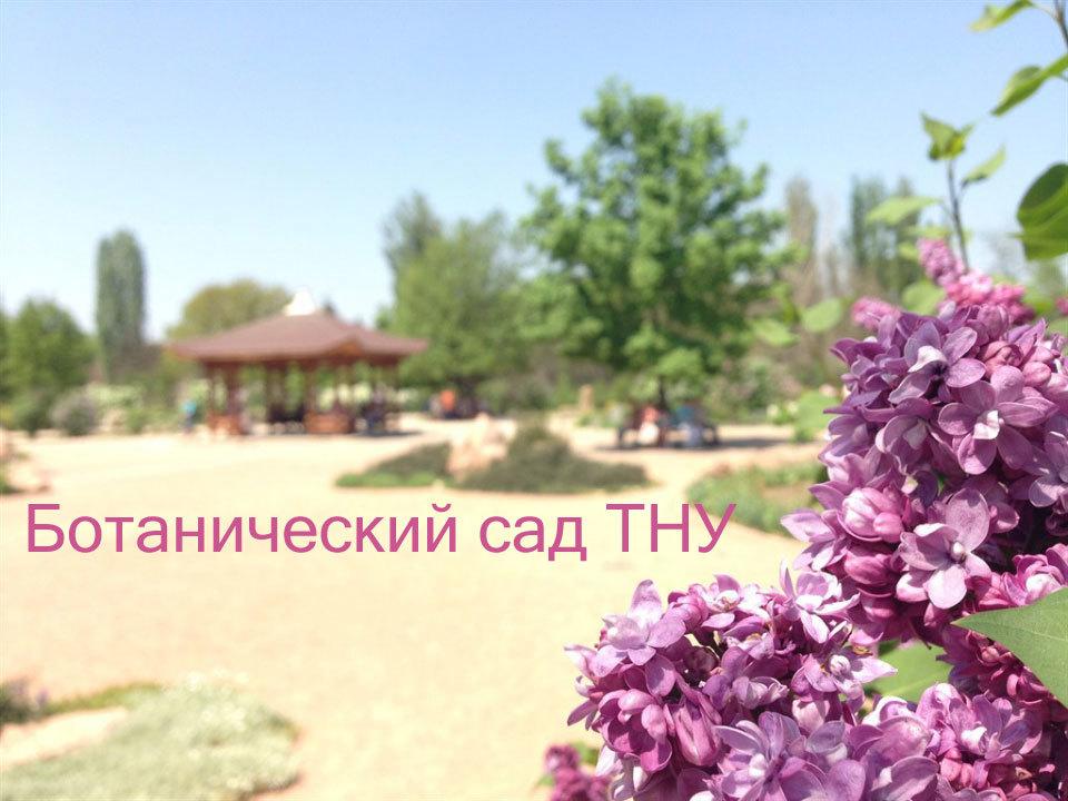 Парк Салгирка, он же ботанический сад ТНУ (Крым)