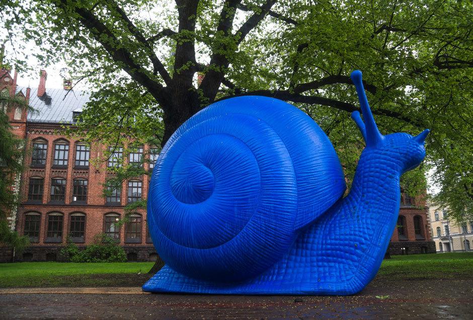 Синяя-гигантская-улитка-в-Риге