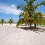 Интересные факты о Доминикане