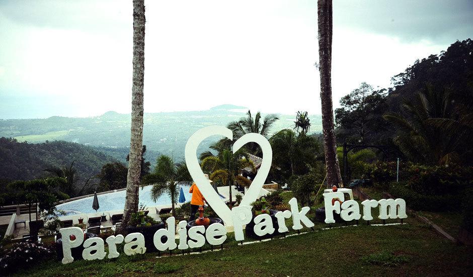 paradise park farm samui (4)