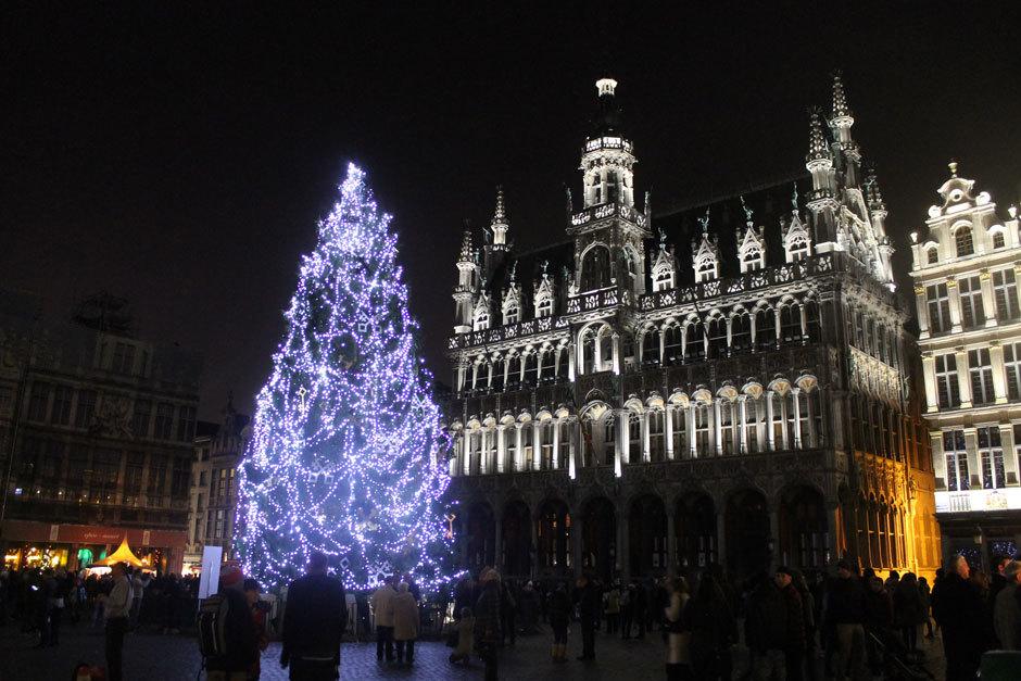 ель в Брюсселе