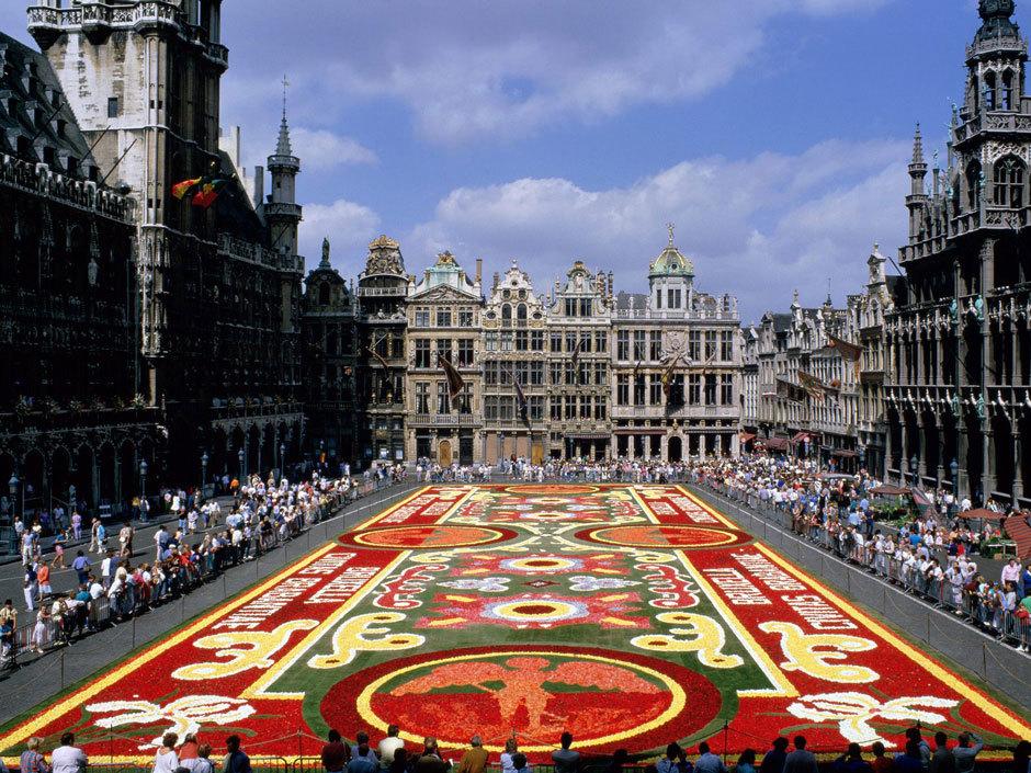 ковер из цветов в Брюсселе (3)