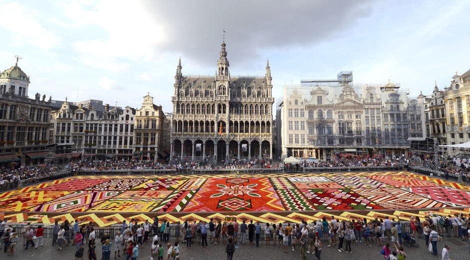 ковер из цветов в Брюсселе (5)