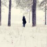 Работа для конкурса «Новогодние интернет картинки» от Сергея Сосновского