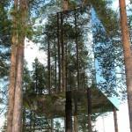Необычные отели мира: гостиницы на дереве
