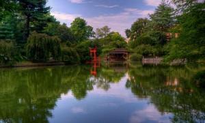 Бруклинский ботанический сад (16)