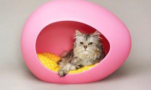 Оригинальный домик для кошек Kitty Pod