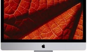 макрофотографии цветов wallpapers