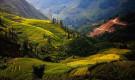 Путешествие во Вьетнам — незабываемый отдых в Юго-Восточной Азии