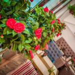 PiLove cafe — для влюбленных в жизнь и хорошую кухню